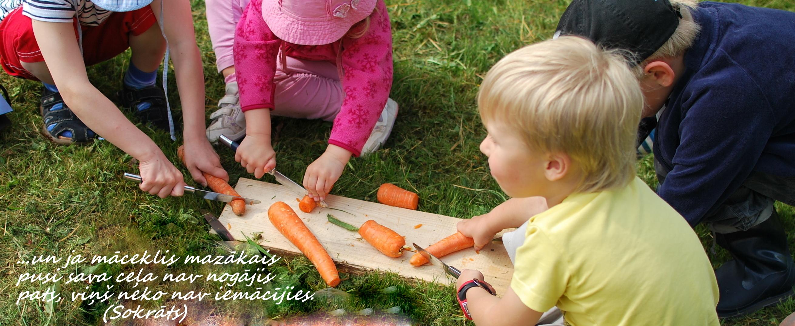 Montessori koncepcija